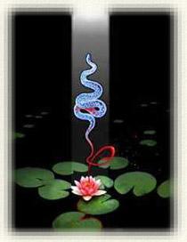 20070413172259-kundalini-yoga.jpg